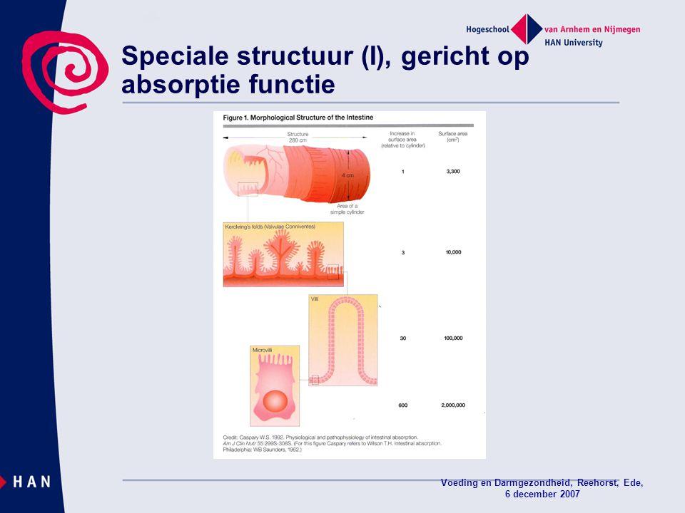 Voeding en Darmgezondheid, Reehorst, Ede, 6 december 2007 Speciale structuur (I), gericht op absorptie functie