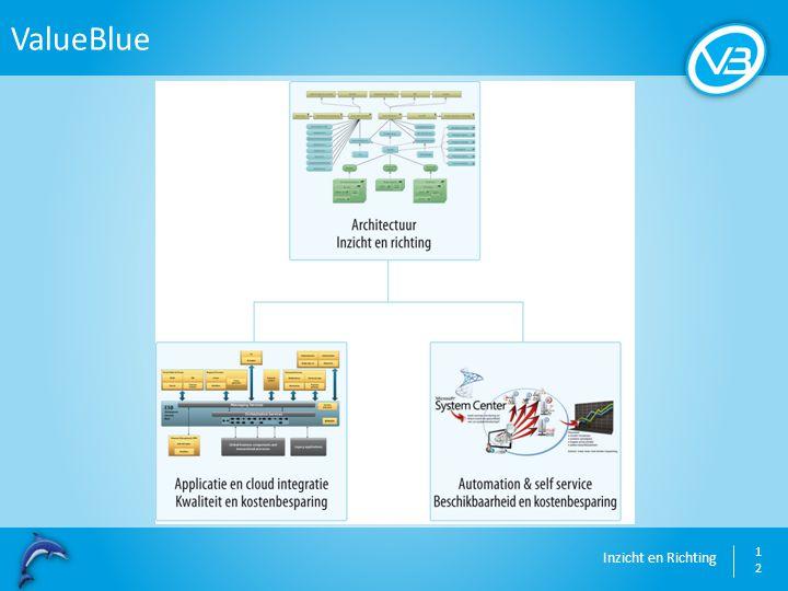 Inzicht en Richting ValueBlue 12