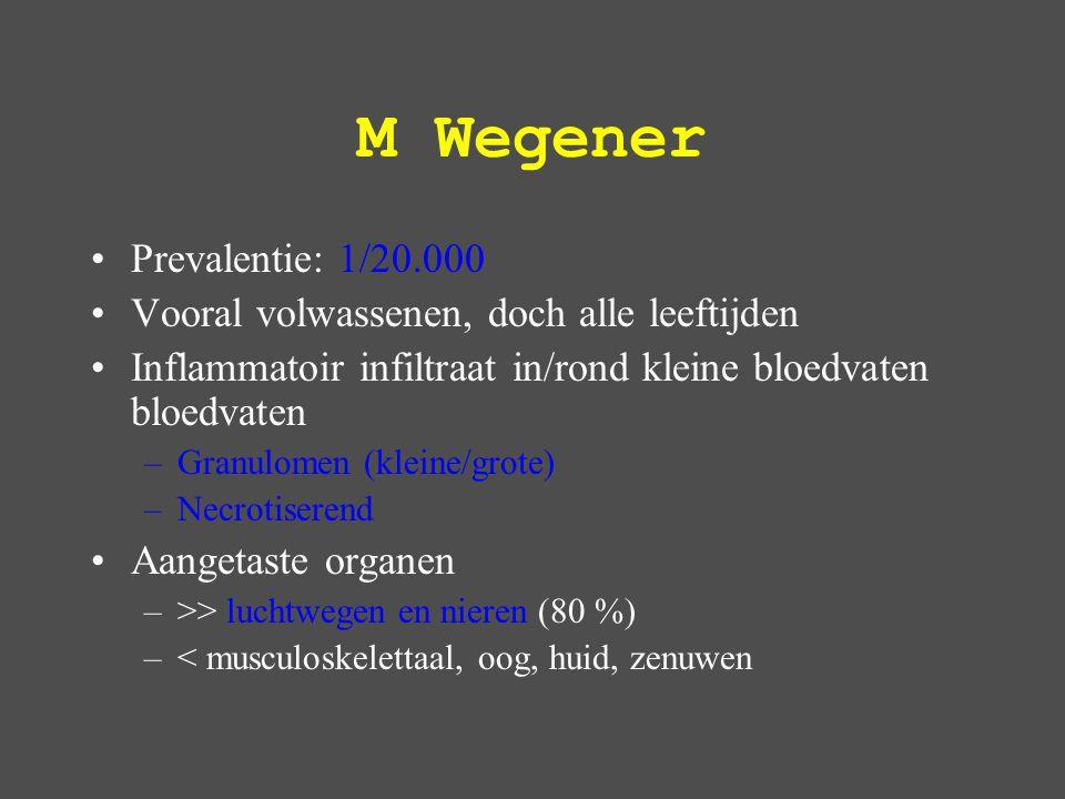 M Wegener Prevalentie: 1/20.000 Vooral volwassenen, doch alle leeftijden Inflammatoir infiltraat in/rond kleine bloedvaten bloedvaten –Granulomen (kleine/grote) –Necrotiserend Aangetaste organen –>> luchtwegen en nieren (80 %) –< musculoskelettaal, oog, huid, zenuwen