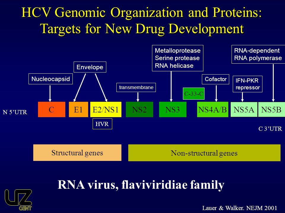 C Non-structural genes Structural genes C-33-C E1NS2E2/NS1NS4A/BNS3NS5A N 5'UTR C 3'UTR Nucleocapsid Envelope transmembrane RNA virus, flaviviridiae f