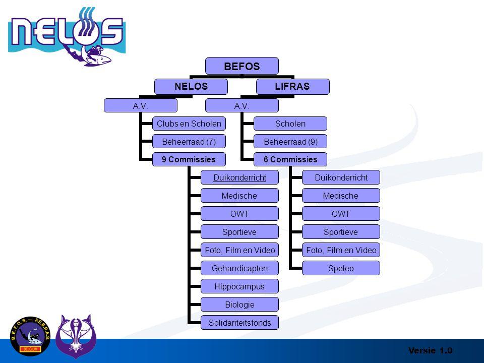 Versie 1.0 BEFOS NELOS A.V. Clubs en Scholen Beheerraad (7) 9 Commissies Duikonderricht Medische OWT Sportieve Foto, Film en Video Gehandicapten Hippo