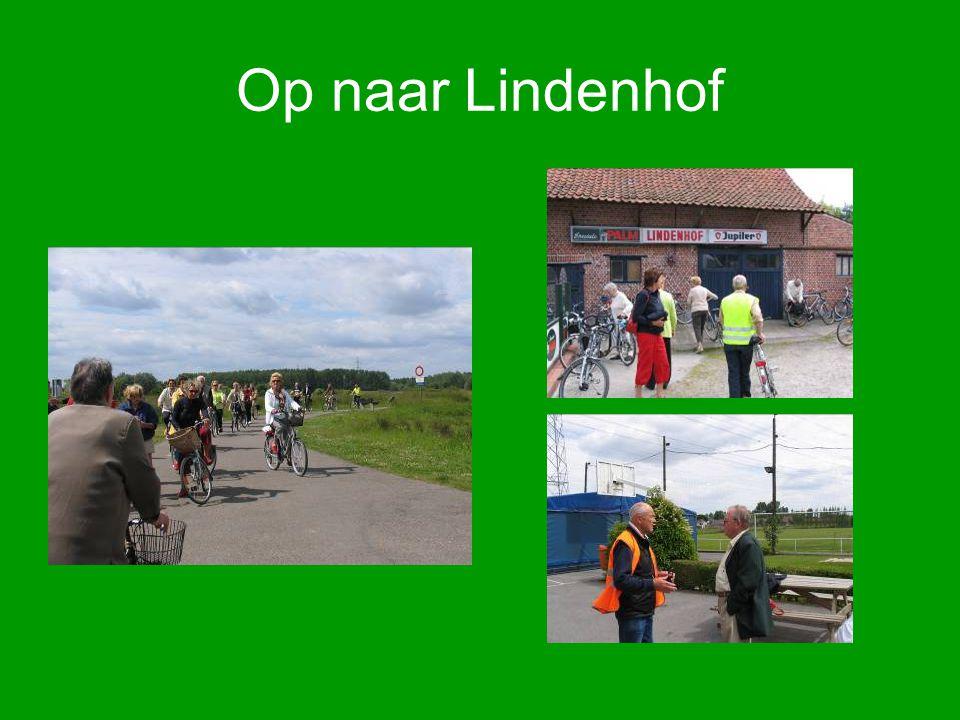 Op naar Lindenhof