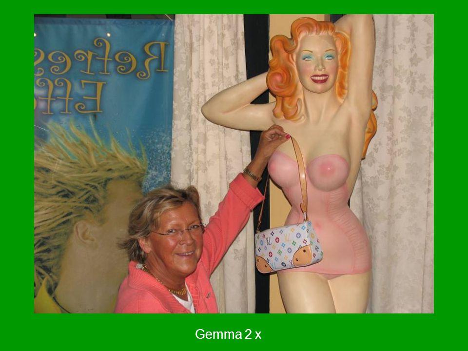 Gemma 2 x