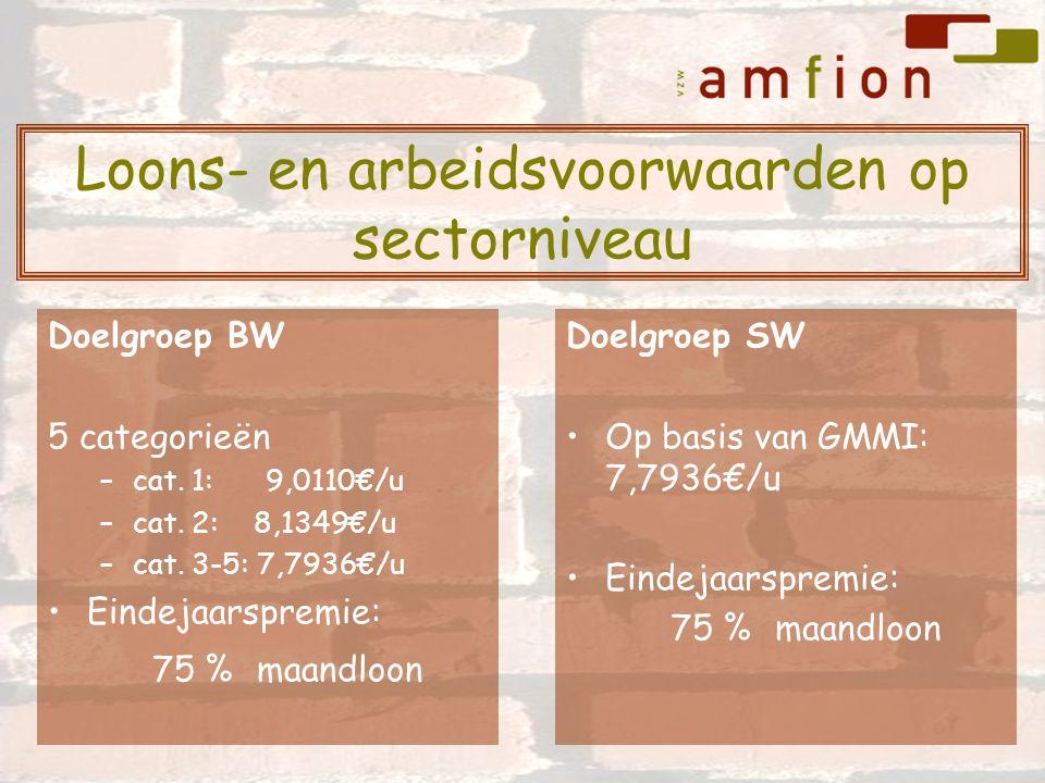 Doelgroep BW 5 categorieën –cat. 1: 9,0110€/u –cat. 2: 8,1349€/u –cat. 3-5: 7,7936€/u Eindejaarspremie: 75 % maandloon Doelgroep SW Op basis van GMMI: