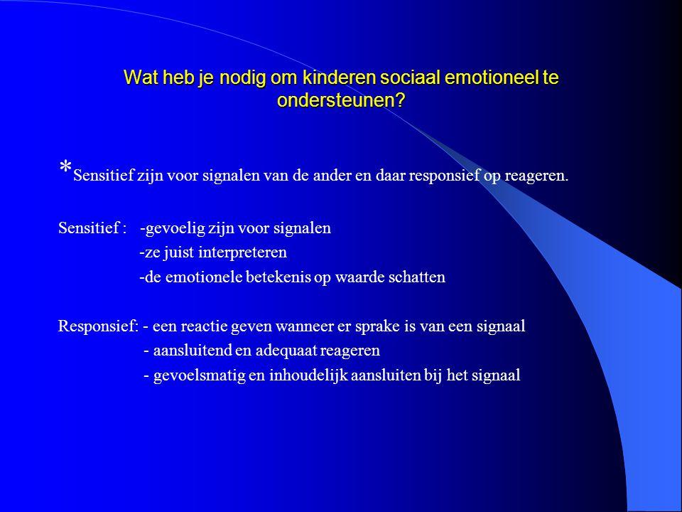 Sociaal competent gedrag Springplank tot succes!
