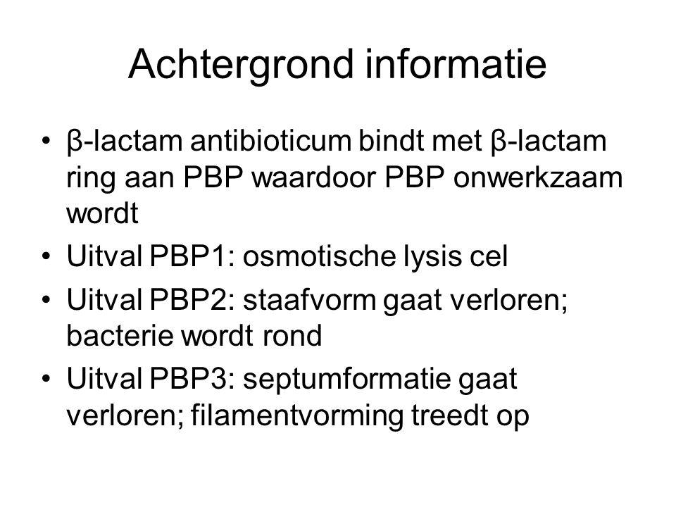 Achtergrond informatie β-lactam antibioticum bindt met β-lactam ring aan PBP waardoor PBP onwerkzaam wordt Uitval PBP1: osmotische lysis cel Uitval PB