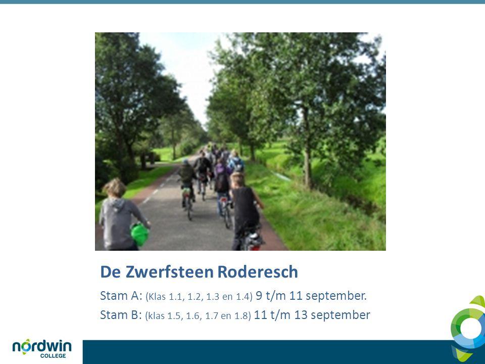 De Zwerfsteen Roderesch Stam A: (Klas 1.1, 1.2, 1.3 en 1.4) 9 t/m 11 september.