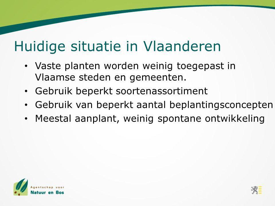 Vaste planten worden weinig toegepast in Vlaamse steden en gemeenten. Gebruik beperkt soortenassortiment Gebruik van beperkt aantal beplantingsconcept