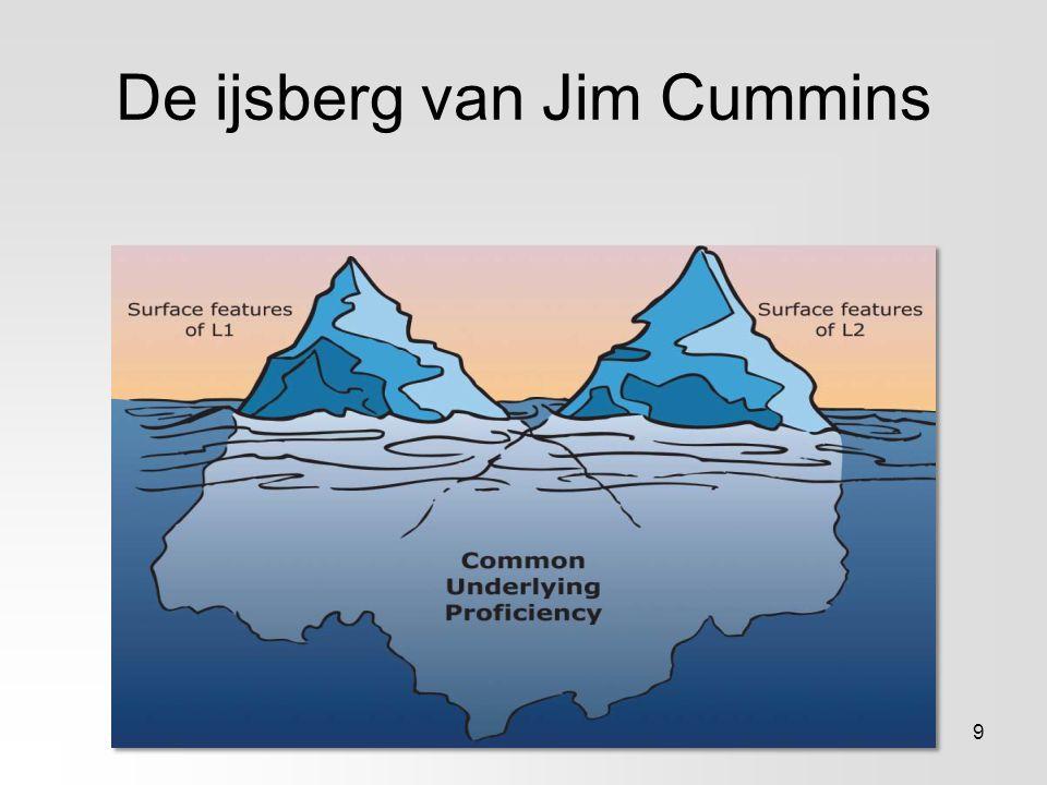 De ijsberg van Jim Cummins 9
