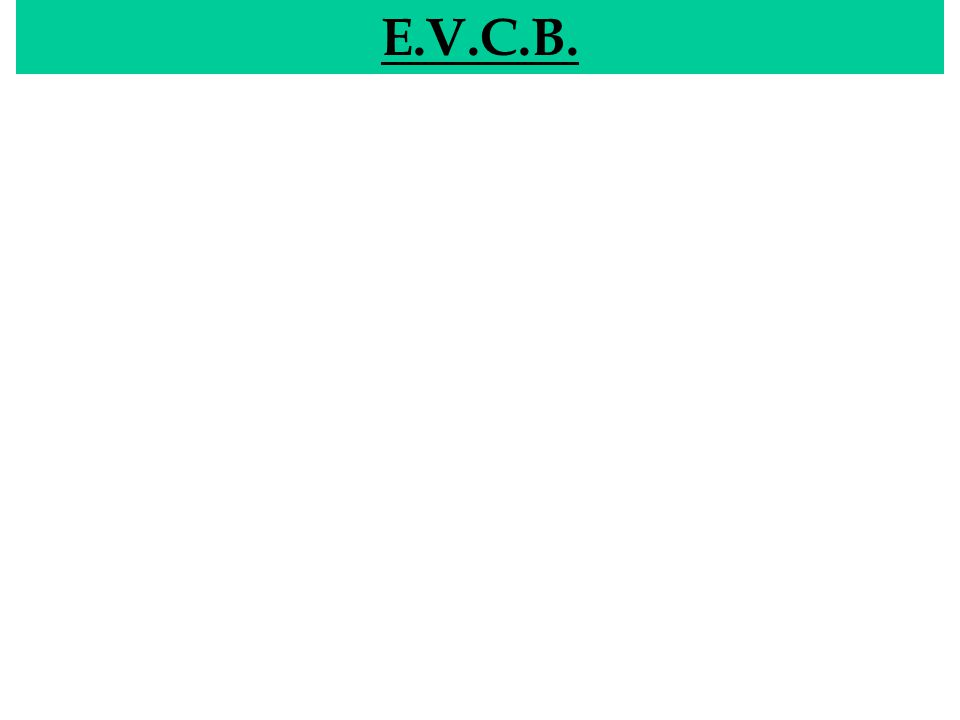 EVCB E.V.C.B.