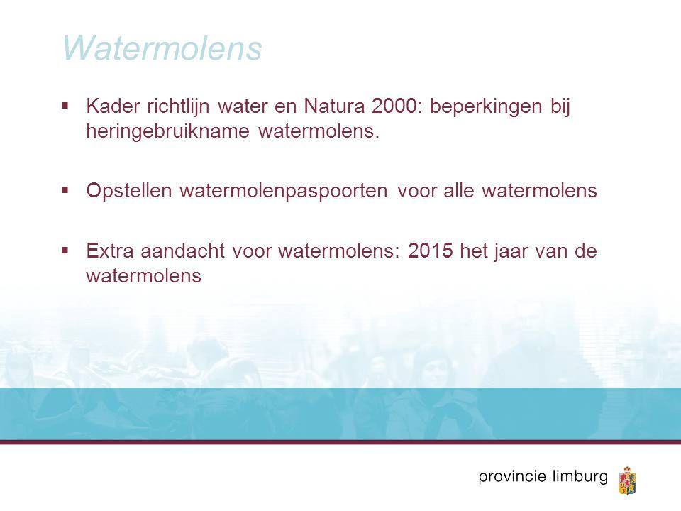 Watermolens  Kader richtlijn water en Natura 2000: beperkingen bij heringebruikname watermolens.  Opstellen watermolenpaspoorten voor alle watermole