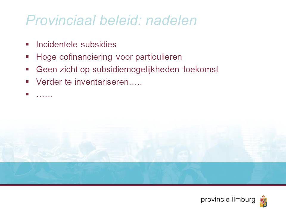 Provinciaal beleid: nadelen  Incidentele subsidies  Hoge cofinanciering voor particulieren  Geen zicht op subsidiemogelijkheden toekomst  Verder t