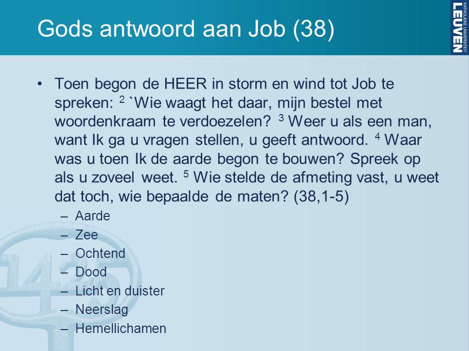 Gods antwoord aan Job (38) Toen begon de HEER in storm en wind tot Job te spreken: 2 `Wie waagt het daar, mijn bestel met woordenkraam te verdoezelen.