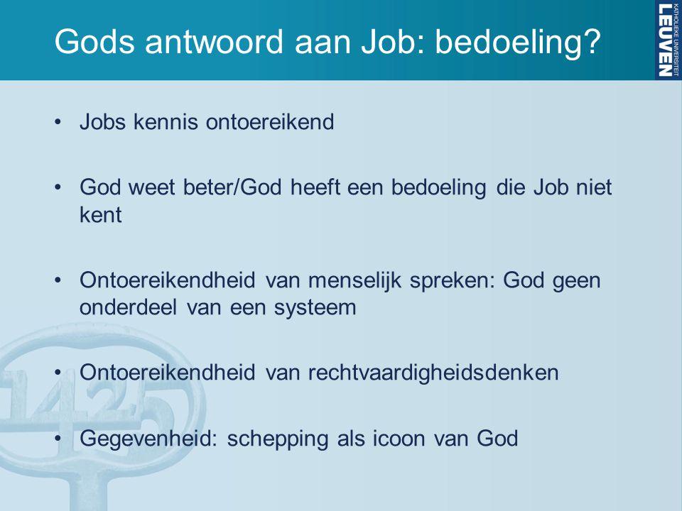Gods antwoord aan Job: bedoeling.