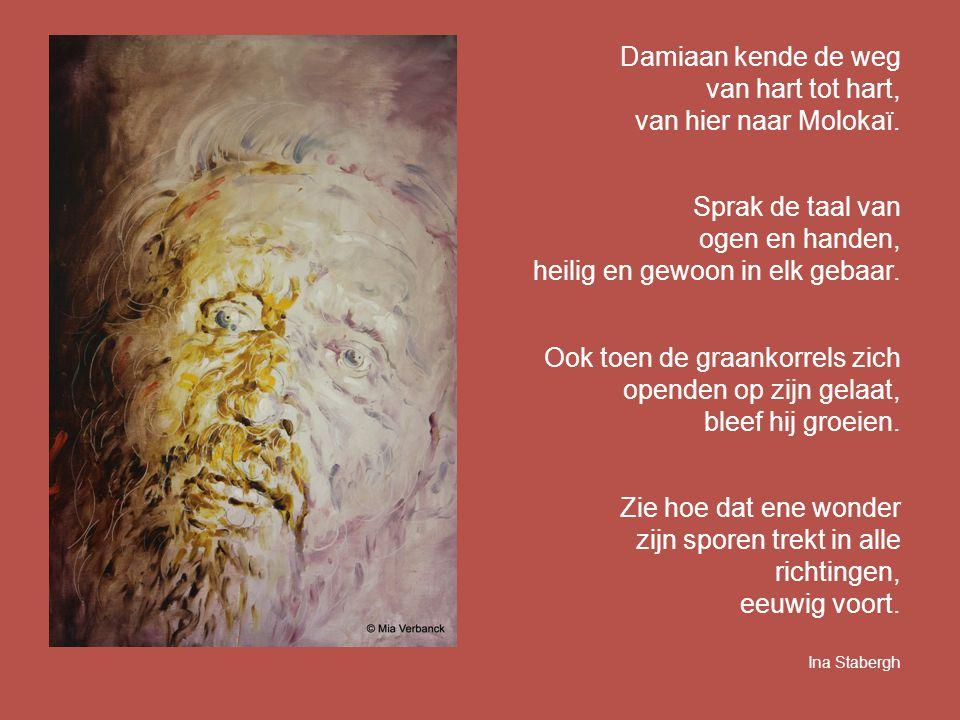 Damiaan kende de weg van hart tot hart, van hier naar Molokaï. Sprak de taal van ogen en handen, heilig en gewoon in elk gebaar. Ook toen de graankorr