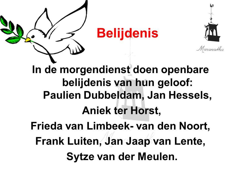 In de morgendienst doen openbare belijdenis van hun geloof: Paulien Dubbeldam, Jan Hessels, Aniek ter Horst, Frieda van Limbeek- van den Noort, Frank