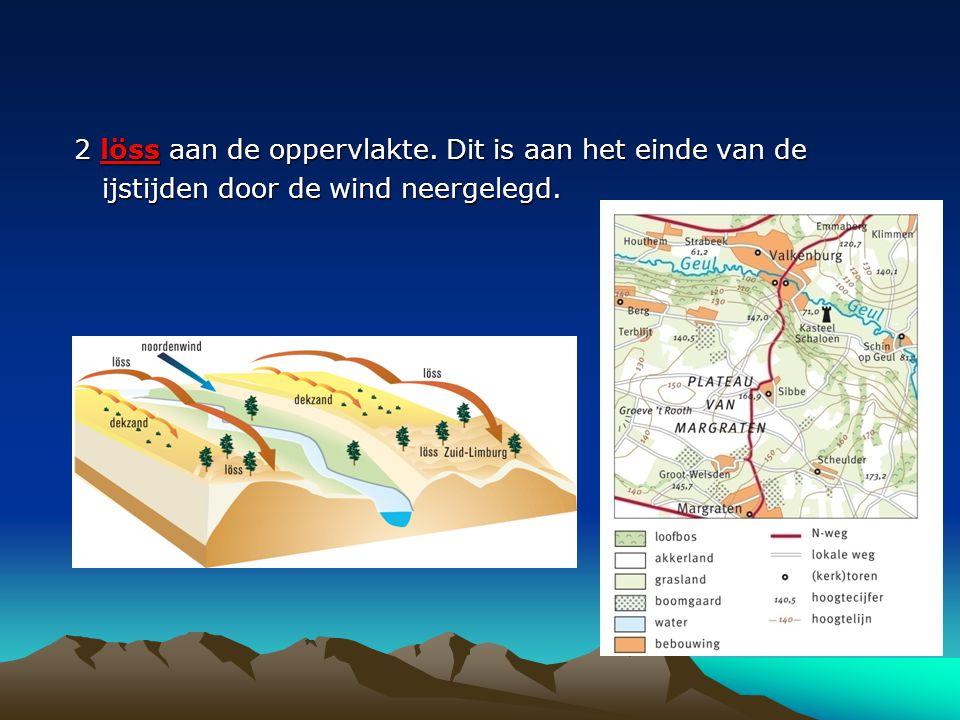 Filmpje lösslandschap http://beta.uitzendinggemist.nl/afleveringe n/1102363-het-losslandschap-het- duinlandschaphttp://beta.uitzendinggemist.nl/afleveringe n/1102363-het-losslandschap-het- duinlandschap