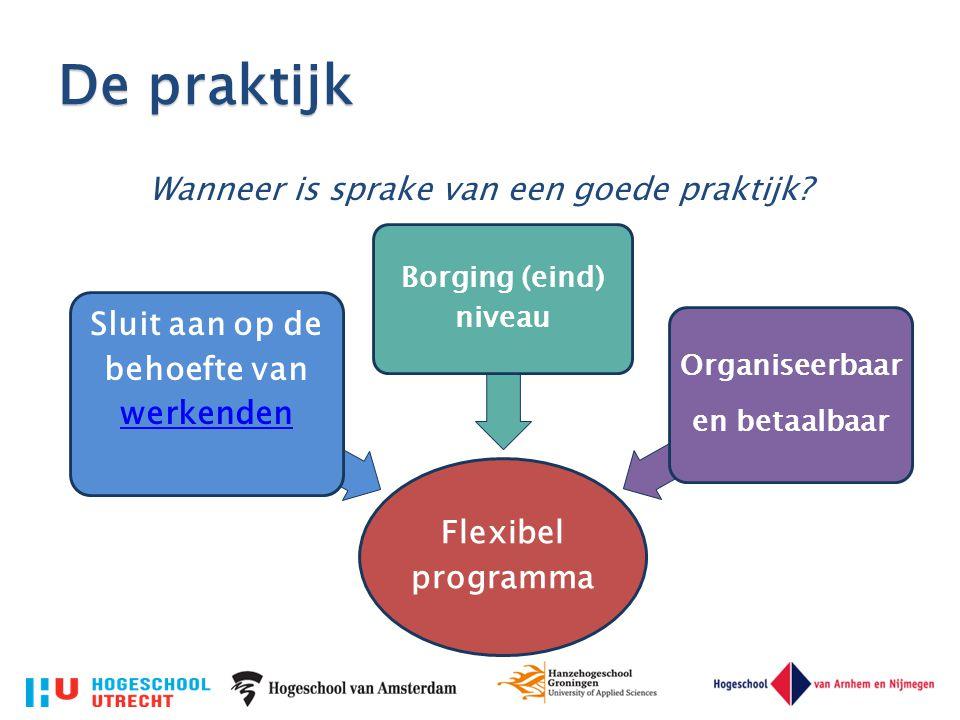 De praktijk Wanneer is sprake van een goede praktijk? Flexibel programma Sluit aan op de behoefte van werkenden werkenden Borging (eind) niveau Organi