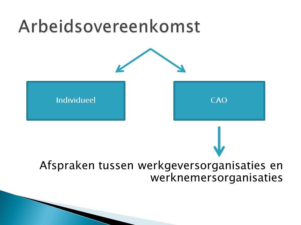Afspraken tussen werkgeversorganisaties en werknemersorganisaties IndividueelCAO
