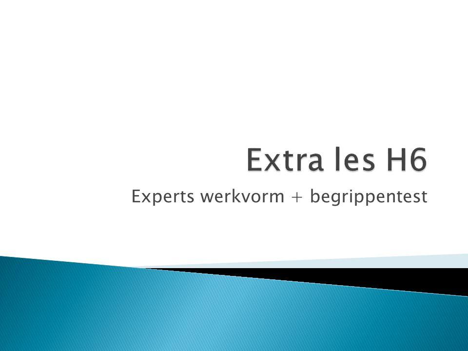Experts werkvorm + begrippentest