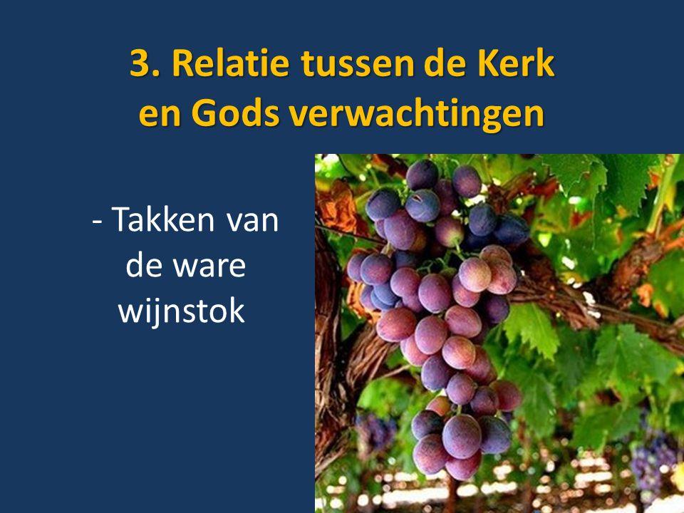 3. Relatie tussen de Kerk en Gods verwachtingen - Takken van de ware wijnstok