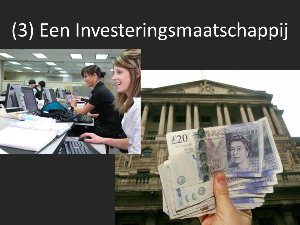 (3) Een Investeringsmaatschappij