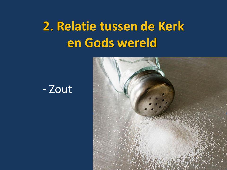 2. Relatie tussen de Kerk en Gods wereld 2. Relatie tussen de Kerk en Gods wereld - Zout