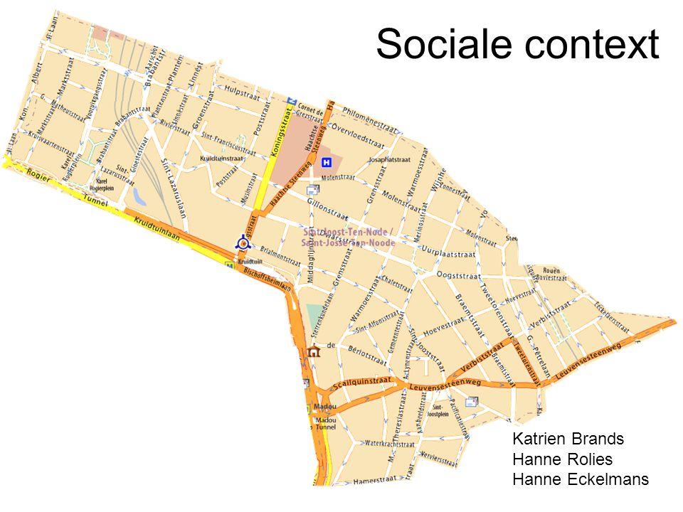 Sociale context Katrien Brands Hanne Rolies Hanne Eckelmans