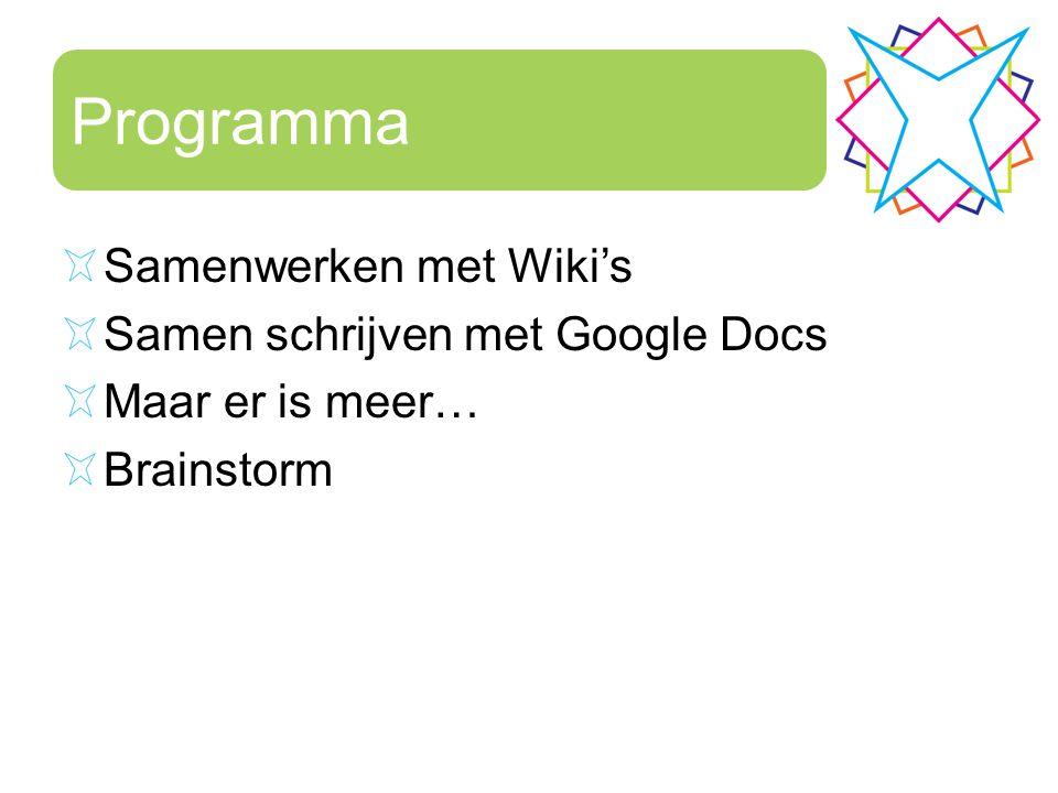Programma Samenwerken met Wiki's Samen schrijven met Google Docs Maar er is meer… Brainstorm