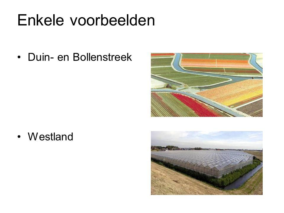 Enkele voorbeelden Duin- en Bollenstreek Westland
