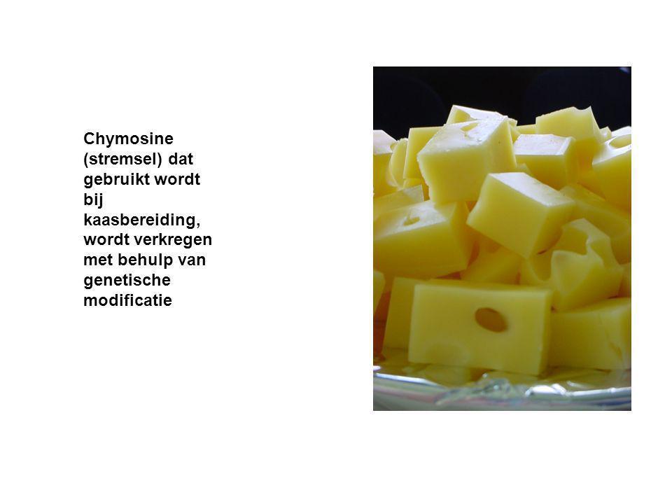 Chymosine (stremsel) dat gebruikt wordt bij kaasbereiding, wordt verkregen met behulp van genetische modificatie