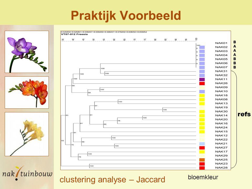Praktijk Voorbeeld BAAABBBBAAABBB refs bloemkleur clustering analyse – Jaccard