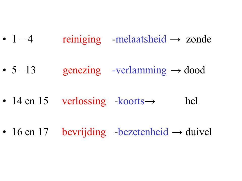 1 – 4 reiniging -melaatsheid → zonde 5 –13 genezing -verlamming → dood 14 en 15 verlossing -koorts→ hel 16 en 17 bevrijding -bezetenheid → duivel