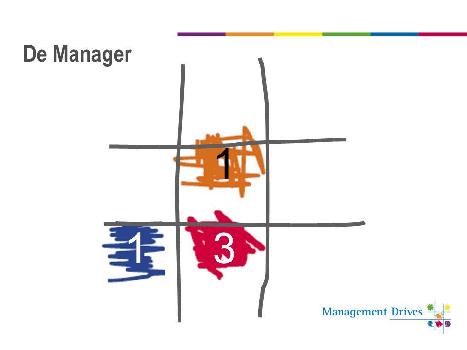 De Manager 1 13