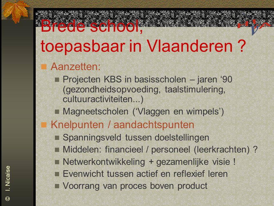 Brede school, toepasbaar in Vlaanderen ? Aanzetten: Projecten KBS in basisscholen – jaren '90 (gezondheidsopvoeding, taalstimulering, cultuuractivitei