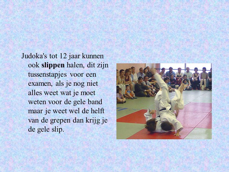 Judoka s tot 12 jaar kunnen ook slippen halen, dit zijn tussenstapjes voor een examen, als je nog niet alles weet wat je moet weten voor de gele band maar je weet wel de helft van de grepen dan krijg je de gele slip.