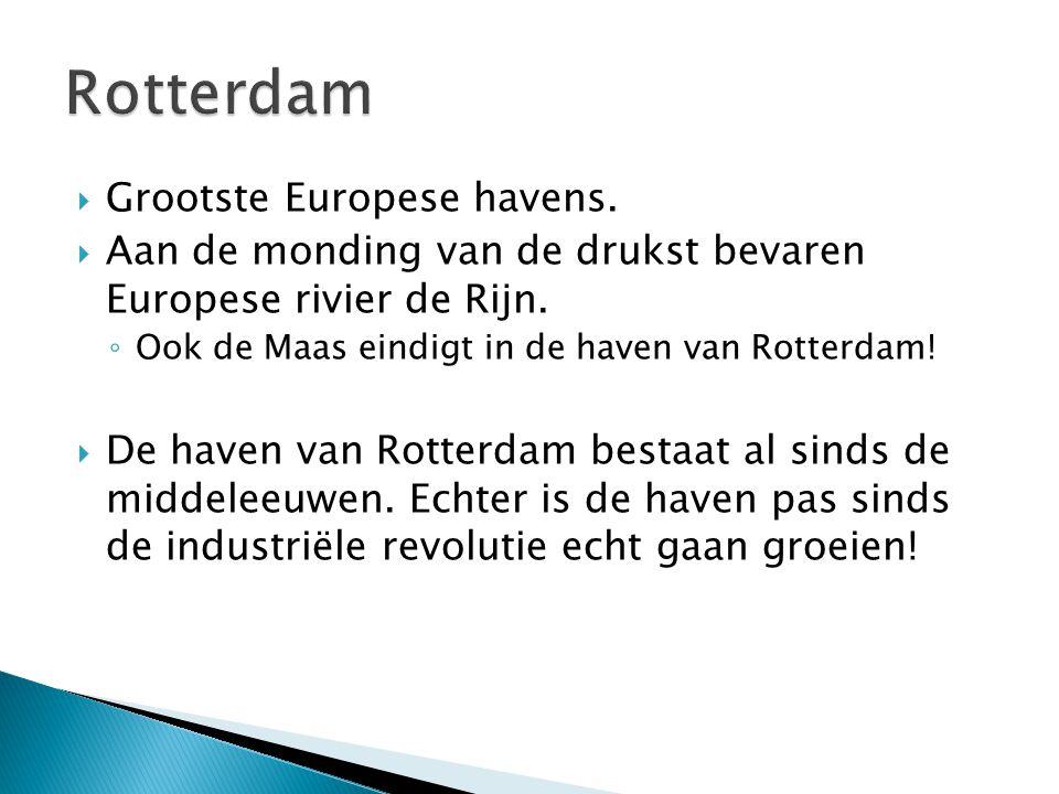  Grootste Europese havens.  Aan de monding van de drukst bevaren Europese rivier de Rijn. ◦ Ook de Maas eindigt in de haven van Rotterdam!  De have