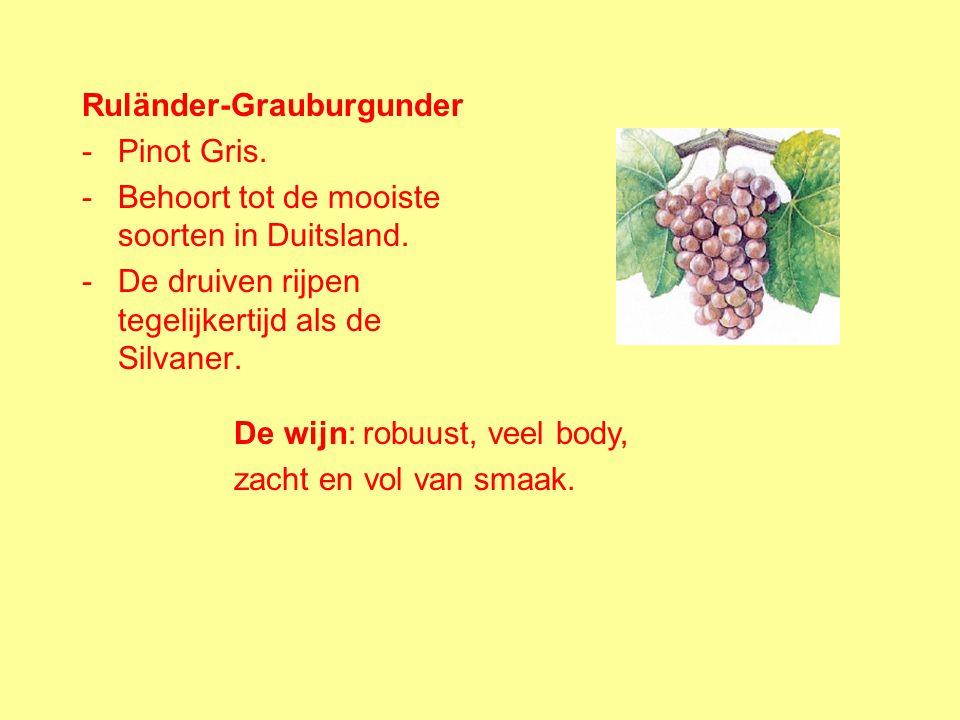 Kerner: -Populaire nieuwe kruising. -Ontstaan uit de Trollinger (rode druif) en de Riesling. -De druiven hebben dikke schillen en rijpen vroeg. De wij