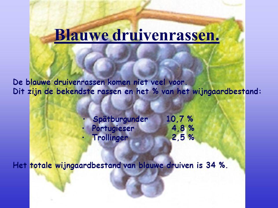 Ruländer-Grauburgunder -Pinot Gris. -Behoort tot de mooiste soorten in Duitsland. -De druiven rijpen tegelijkertijd als de Silvaner. De wijn: robuust,