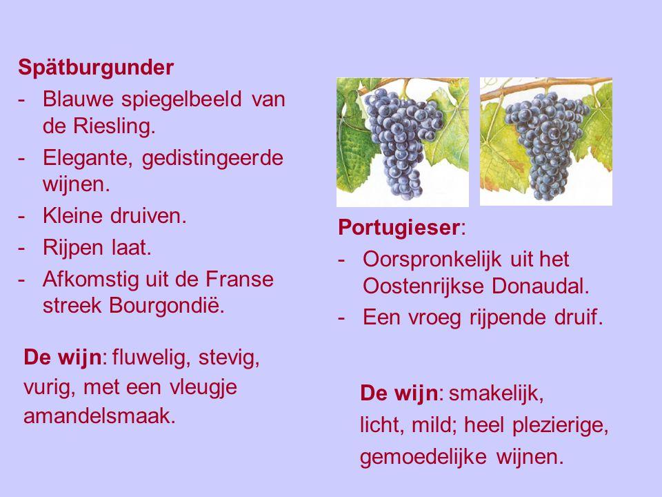 Blauwe druivenrassen. De blauwe druivenrassen komen niet veel voor. Dit zijn de bekendste rassen en het % van het wijngaardbestand: Spätburgunder 10,7