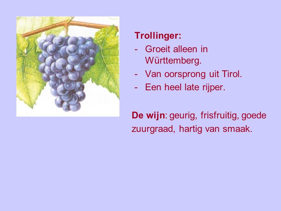Spätburgunder -Blauwe spiegelbeeld van de Riesling. -Elegante, gedistingeerde wijnen. -Kleine druiven. -Rijpen laat. -Afkomstig uit de Franse streek B