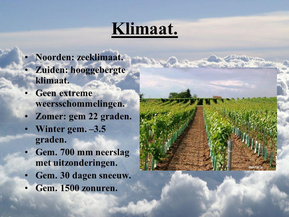 Franken & Wurttemberg. Franken: 6000 hectare. Bodem bestaat uit zandsteen, leem, kalk, en een beetje koper. Klimaat: gem. 9.1 graden. Zonuren: 1631. F