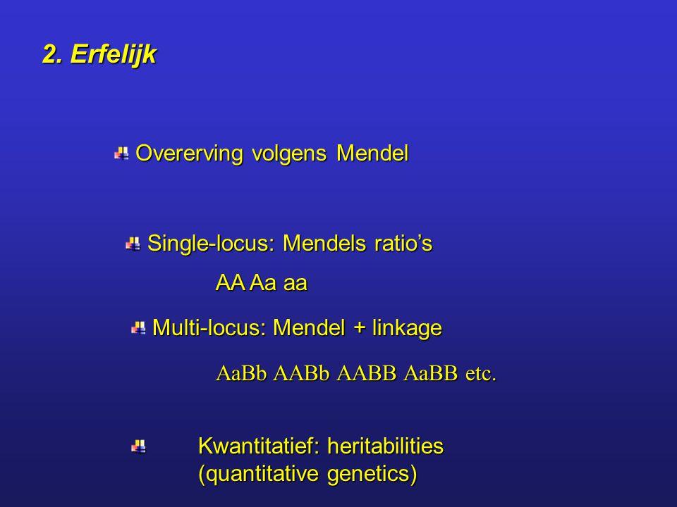 2. Erfelijk Overerving volgens Mendel Kwantitatief: heritabilities (quantitative genetics) Single-locus: Mendels ratio's Single-locus: Mendels ratio's