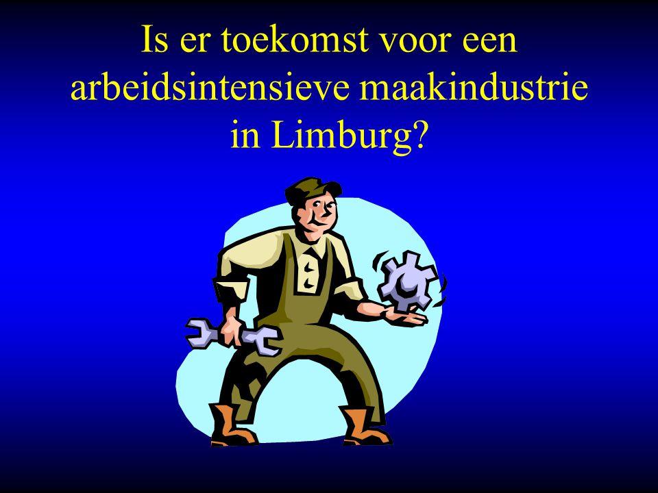 Is er toekomst voor een arbeidsintensieve maakindustrie in Limburg?