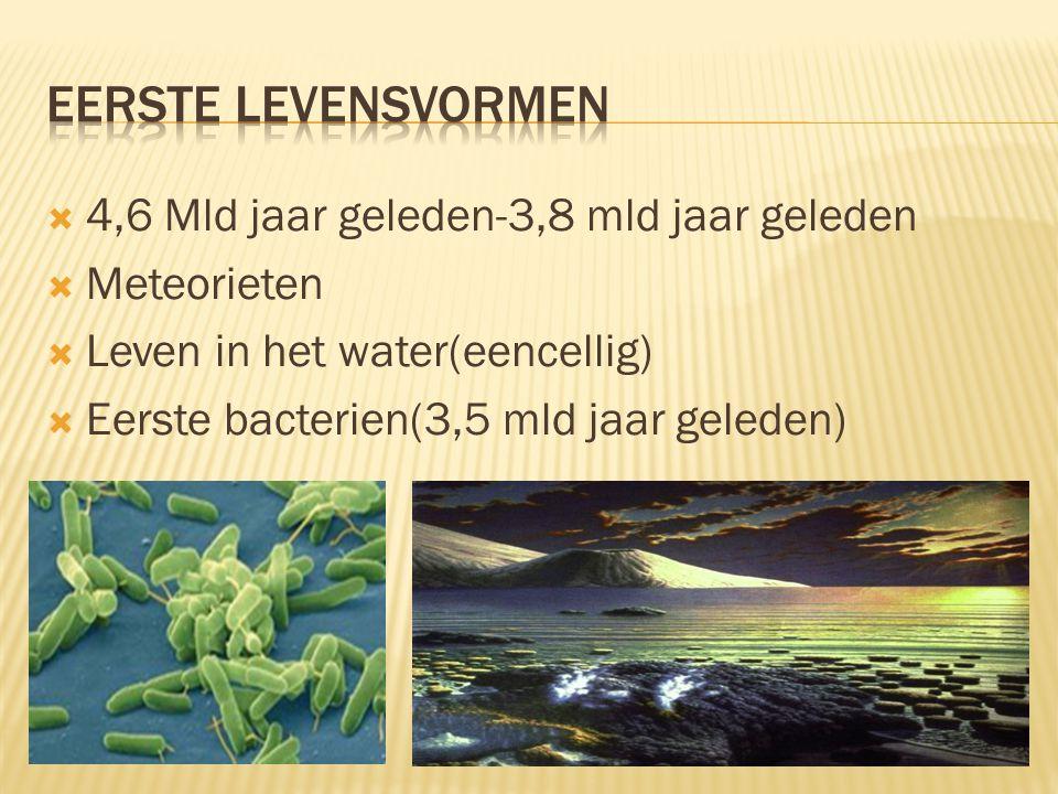  4,6 Mld jaar geleden-3,8 mld jaar geleden  Meteorieten  Leven in het water(eencellig)  Eerste bacterien(3,5 mld jaar geleden)
