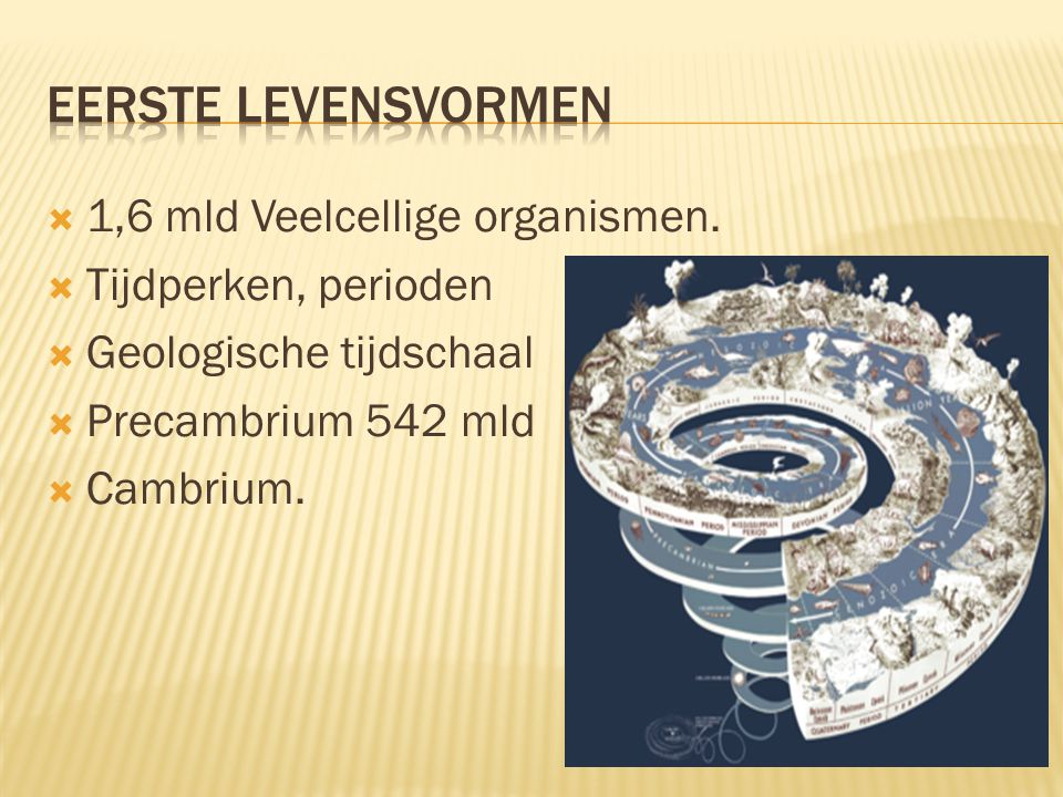  1,6 mld Veelcellige organismen.