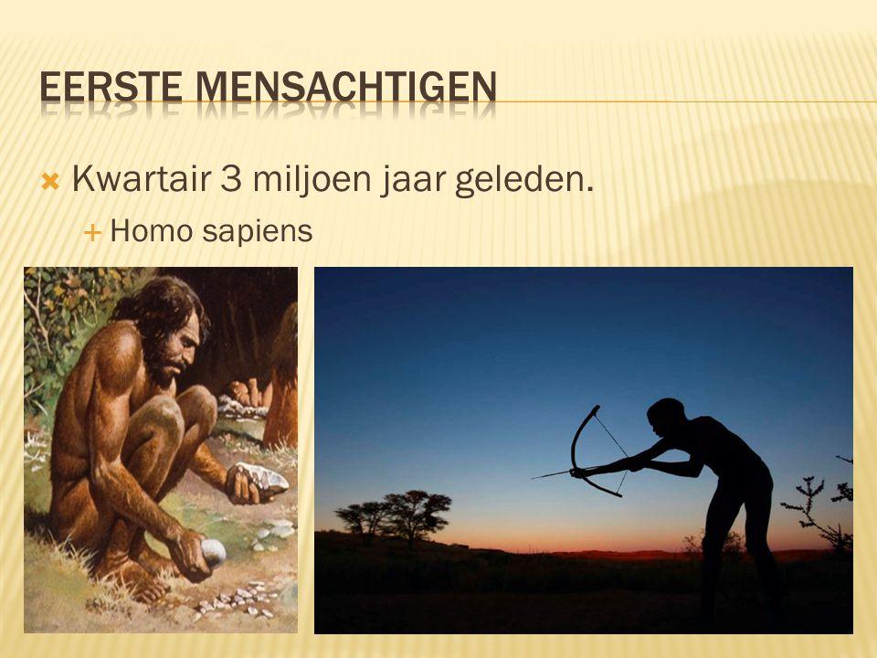  Kwartair 3 miljoen jaar geleden.  Homo sapiens