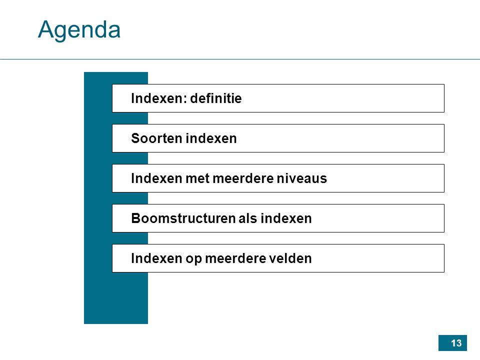 13 Agenda Indexen: definitie Soorten indexen Indexen met meerdere niveaus Boomstructuren als indexen Indexen op meerdere velden