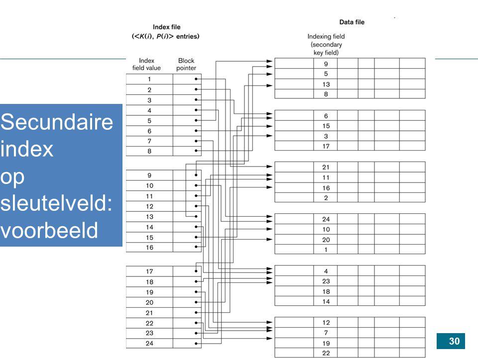 30 Secundaire index op sleutelveld: voorbeeld