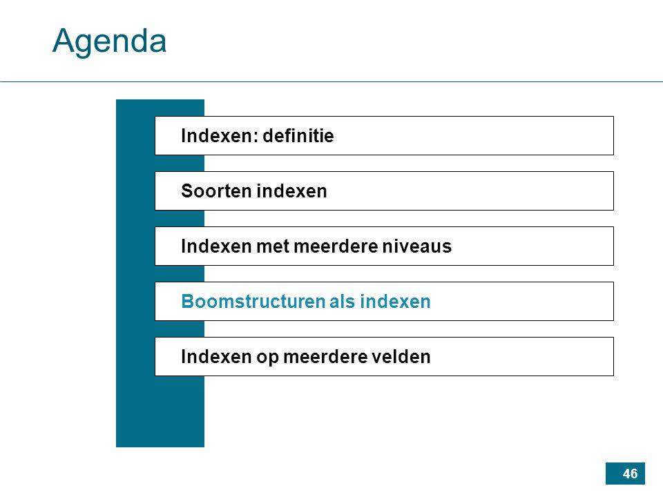 46 Agenda Indexen: definitie Soorten indexen Indexen met meerdere niveaus Boomstructuren als indexen Indexen op meerdere velden